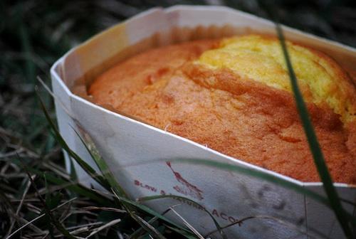 ACOT 塩ケーキ