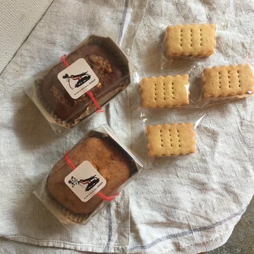 冷凍便「塩ケーキ2種&マスカットのレーズンサンドBOX」